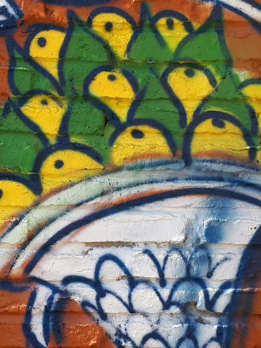 grafitipisano (3)
